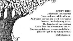 The poet tree 🌲