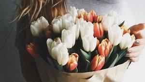 Про що мовчать твої тюльпани?