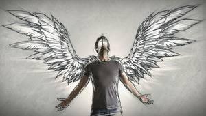 Крила не мої